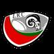 zamora rugby mini