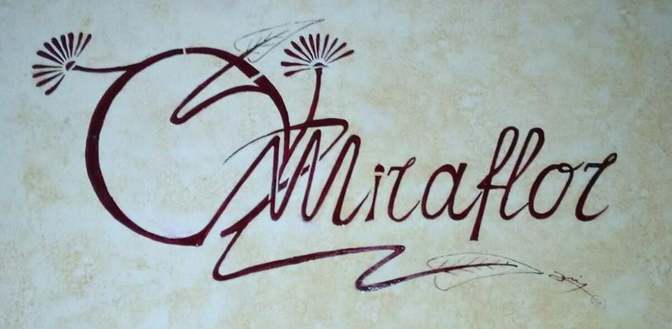 miraflor centro de dia